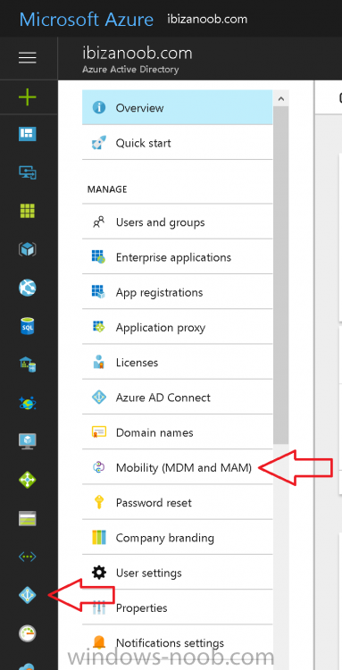mobility mdm and mam.png
