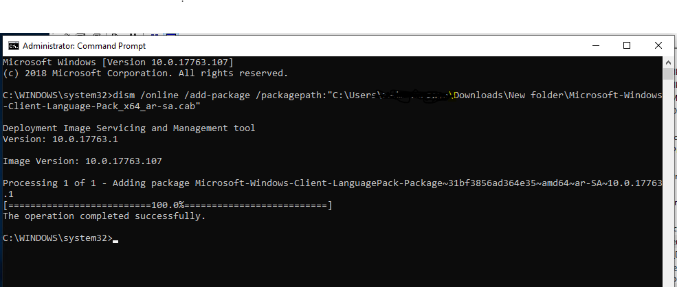 Windows 10 1809 - Installed Language Pack Not Listed