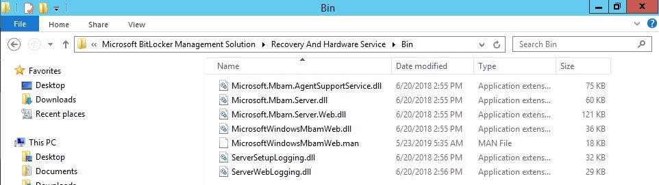 bin files.png